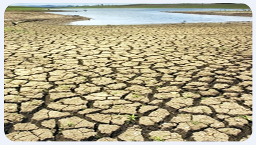 http://www.nwasianweekly.com/wp-content/uploads/2012/31_28/world_drought.jpg